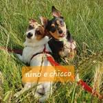 Nino e Chicco